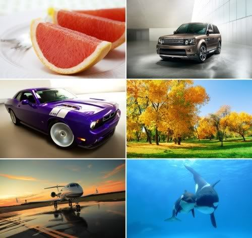 The Best Mixed Wallpapers 347