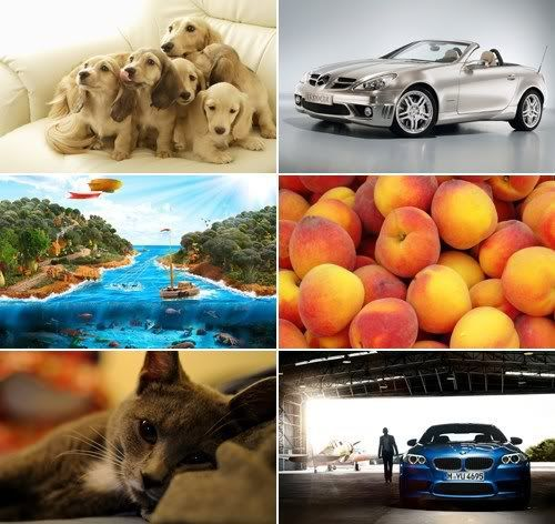 The Best Mixed Wallpapers 375