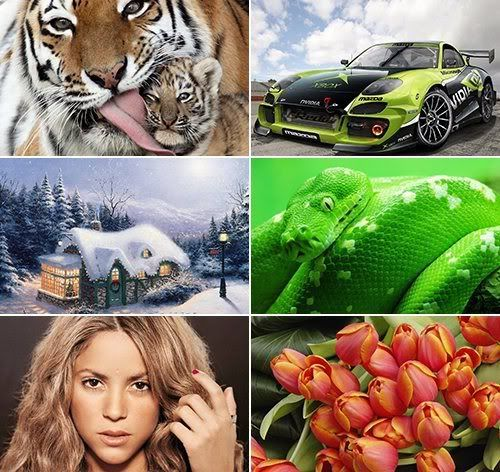 The Best Mixed Wallpapers 393