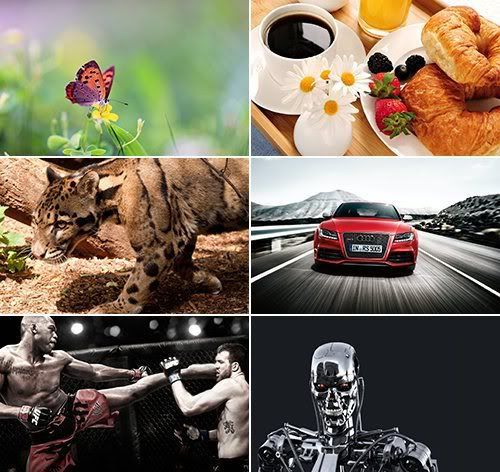 The Best Mixed Wallpapers 396