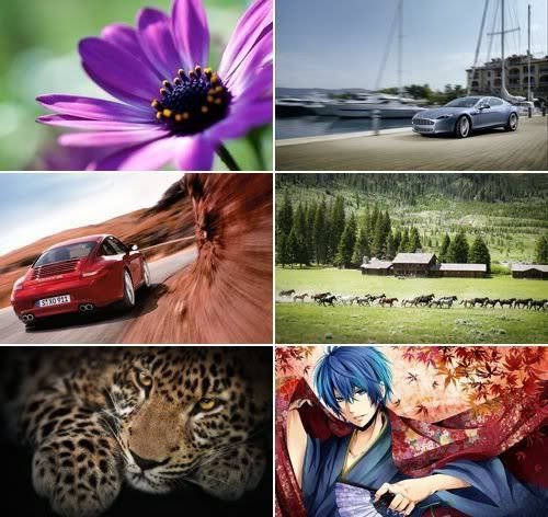 The Best Mixed Wallpapers 416