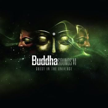 Buddha Sounds Vol 6: Guest in the Universe (2011)
