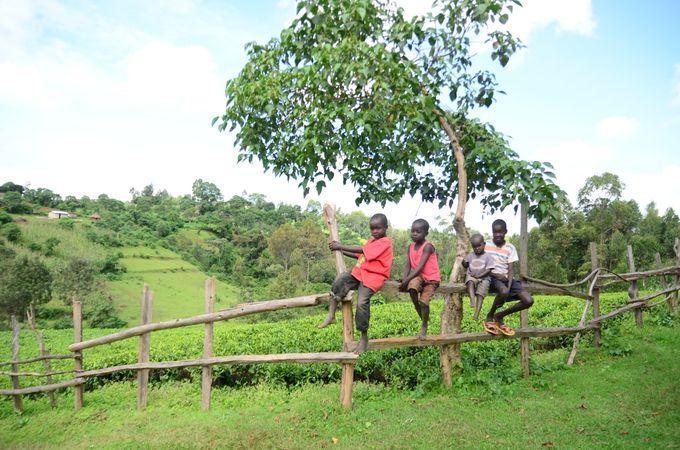 【肯亞】我在肯亞做義工的生活(上)