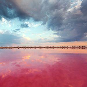 Убави фотографии од недопреното езеро Сасик-Сиваш