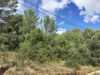Zu verkaufen erschlossenes Baugrundstuck bei Bunyola  Mallorca  Die Lage ist absolut ruhig (praktisch kein Autoverkehr)  Bunyola ist 5 km entfernt  Palma 15 km