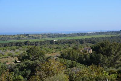 Das riesige und fantastisch gelegene Baugrundstuck befindet sich ganz in der Nahe von Porto Colom und Santanyi im Sudosten der Insel Mallorca