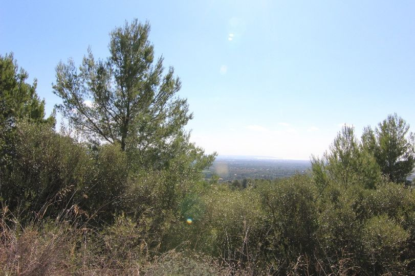 930,00mq of urban land , on one of the most spectacular area at only five minutes away from Palma
