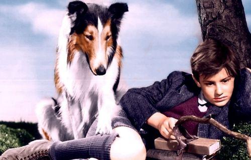 Lassie Come Home FULL movie