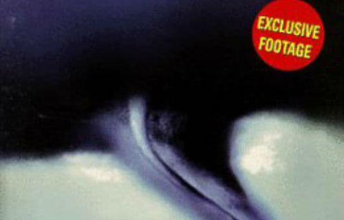 Twister: Fury on the Plains FULL movie