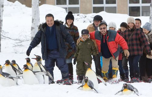 Penguins in the sky - Asahiyama zoo film complet