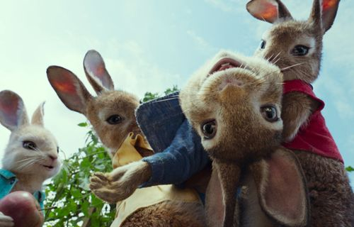 Pierre Lapin film complet