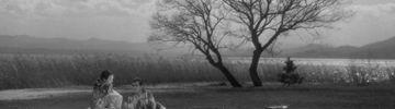 Les Contes de la lune vague après la pluie