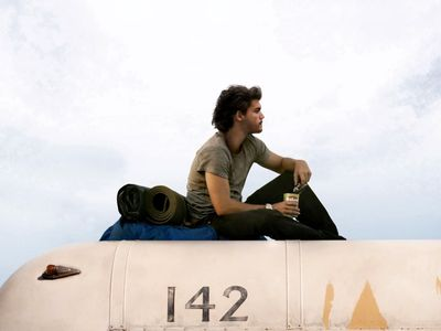 watch Into the Wild streaming