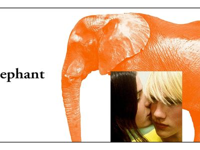 watch Elephant streaming