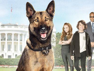 watch Max 2: White House Hero streaming