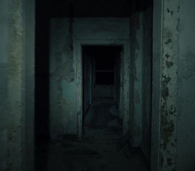 Spirits in the Dark online