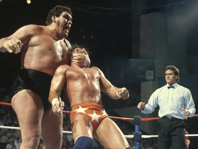 watch Andre the Giant streaming