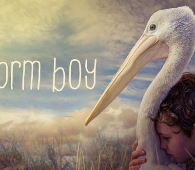 Storm Boy online