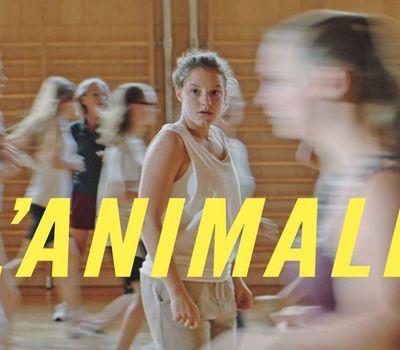 L'Animale online