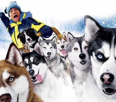 Snow Dogs online