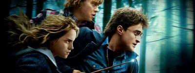 Harry Potter et les Reliques de la mort : 1ère partie online