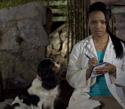 Dr. Dolittle: Tail to the Chief online