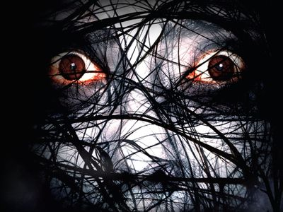 watch The Grudge 2 streaming