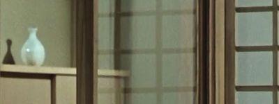 Talking with Ozu online