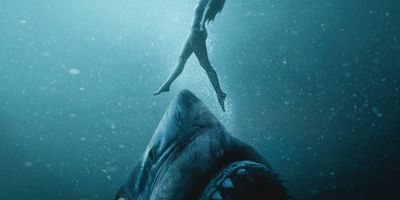 47 meters down : uncaged en streaming