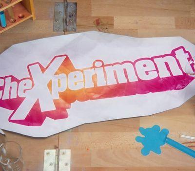 CheXperiment online