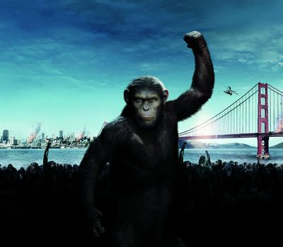 Rise of the Planet of the Apes online