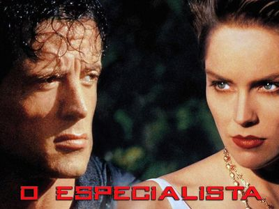 watch The Specialist streaming