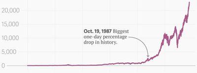 The Bubble online