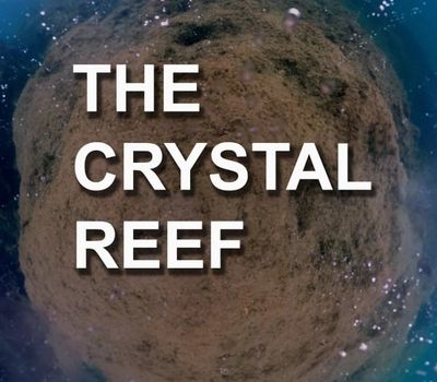 The Crystal Reef online