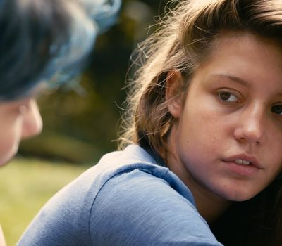 Blue Is the Warmest Color online