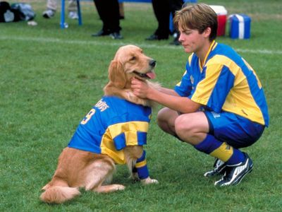 watch Air Bud: World Pup streaming