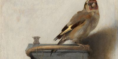 The Goldfinch en streaming