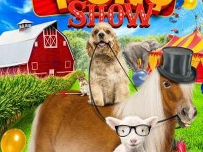 watch A Dog and Pony Show streaming