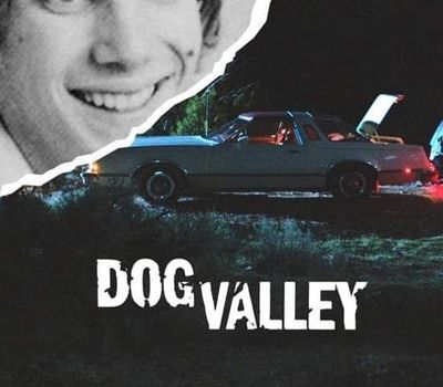 Dog Valley online
