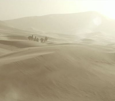 Queen of the Desert online