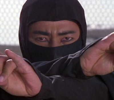 Revenge of the Ninja online