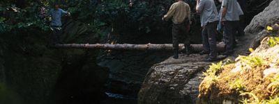 Wilderness online