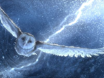 watch Legend of the Guardians: The Owls of Ga'Hoole streaming