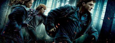 Harry Potter et les Reliques de la mort: 1ère partie online