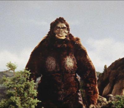 King Kong vs. Godzilla online