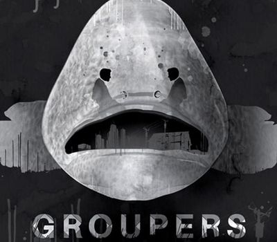 Groupers online