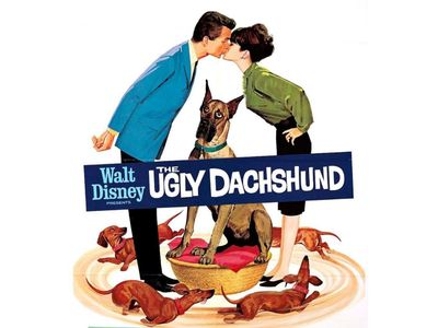 watch The Ugly Dachshund streaming