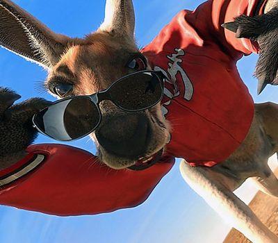 Kangaroo Jack online