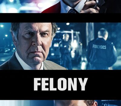 Felony online