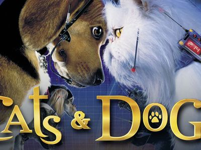 watch Cats & Dogs streaming